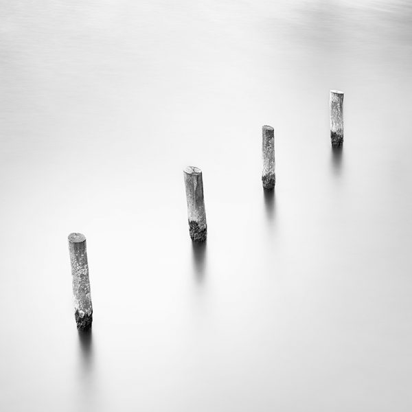 Long exposure image of four posts in the Heron Pond, Bushy Park